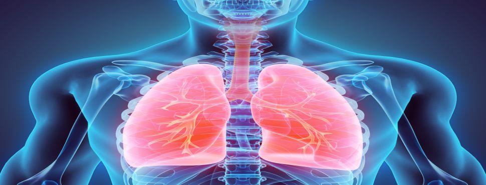 Organlarınız hayat olsun!