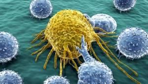 Kanser Hücreleri Kendilerini Yavaşlatabiliyor!